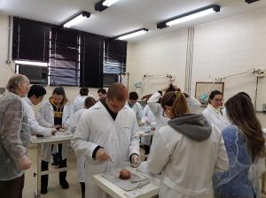 Workshop de Suturas - Liga Acadêmica de Técnica Operatória e Cirurgia Experimental