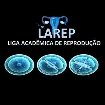 logo_larep